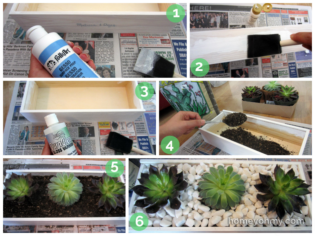 DIY Succulent Box Tutorial