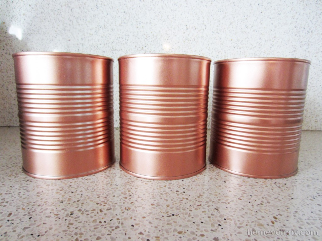 Copper Cans