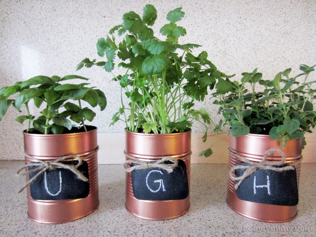 Tin Can Planters Ugh