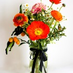 Flower arranging- Ranunculus, Poppies, and Kumquats