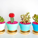 Gold Dipped Plant Pots- Guest Post at PBteen