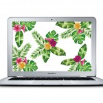 Tropical Desktop Download