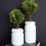 Topiaries Inspired by The Plant Recipe Book