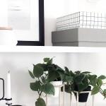 DIY Mini Plant Stands